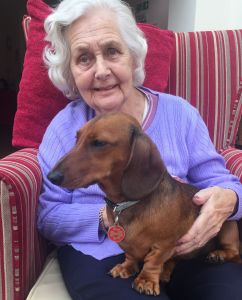 A resident doing pet therapy at The Beeches